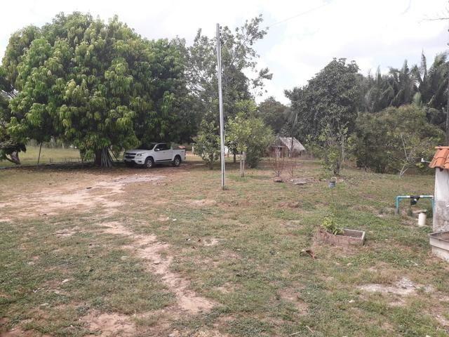 Fazenda em Santa Rita parcelada e sem juros!!! - Foto 5