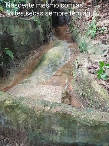 Sítio em Colatina na ES 248 na beira do Rio Doce - Foto 19