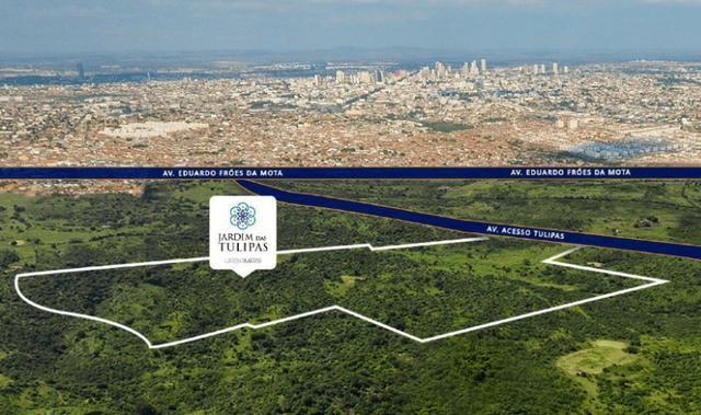 Oportunidade Passo Lote nascente R$65.000,00 Facilito entrada Jardimdas Tulipas - Foto 13