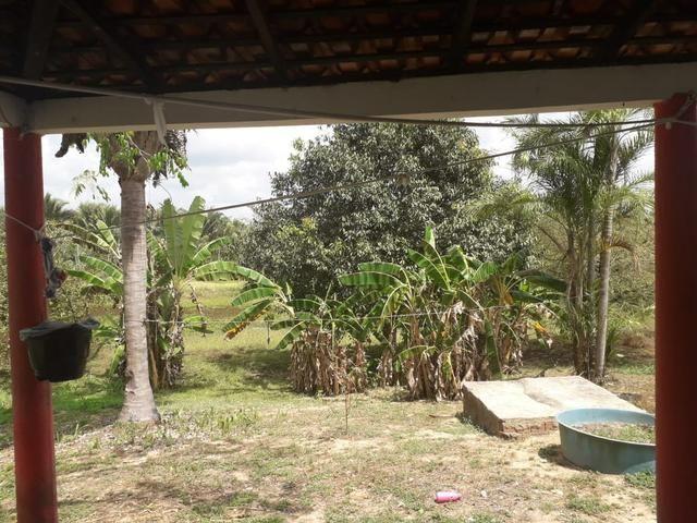 Fazenda em Santa Rita parcelada e sem juros!!! - Foto 6