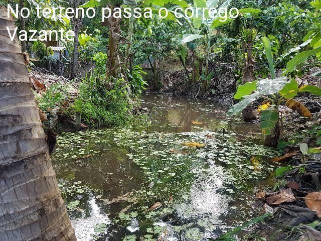 Sítio em Colatina na ES 248 na beira do Rio Doce - Foto 20