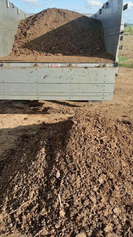 Esterco de gado puro - Foto 2