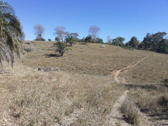 Terra assentamento 30 anos 7 alqueires  - Foto 11
