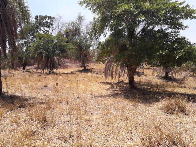 Terra assentamento 30 anos 7 alqueires  - Foto 7