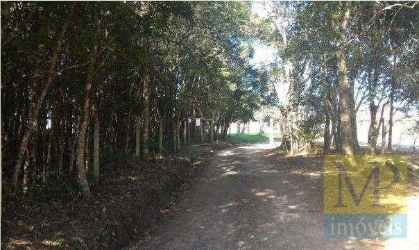 Sítio à venda, 44300 m² por R$ 900.000,00 - Zona Rural - Rio Negrinho/SC - Foto 7