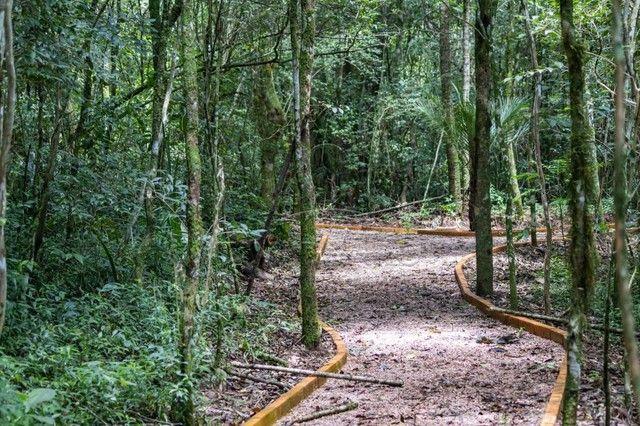 Terreno à venda em Contorno, Ponta grossa cod:V5714 - Foto 13