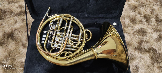 Trompa Stanford - Foto 5