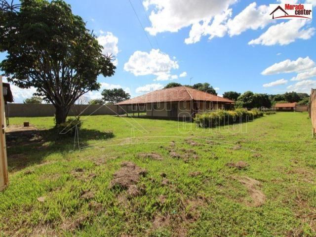Rural na cidade de Araraquara cod: 5562 - Foto 2