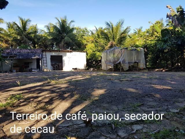 Sítio em Colatina na ES 248 na beira do Rio Doce - Foto 8