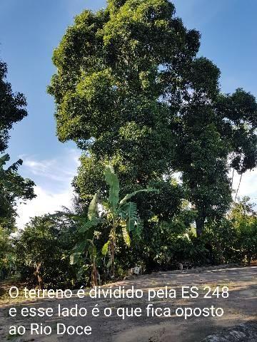 Sítio em Colatina na ES 248 na beira do Rio Doce - Foto 9