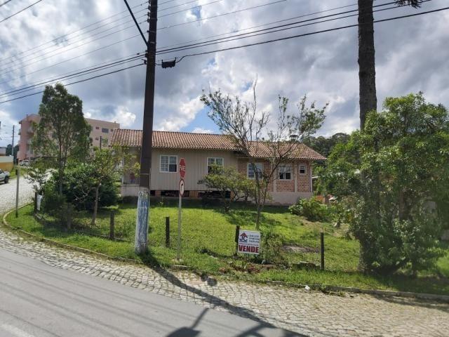EXCELENTE TERRENO COMERCIAL AS MARGENS DA BR 280 - VILA NOVA - RIO NEGRINHO SC - Foto 2