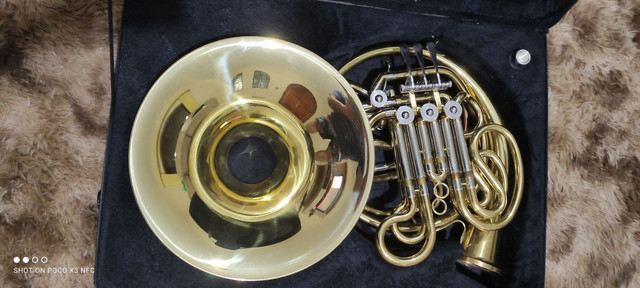 Trompa Stanford - Foto 6
