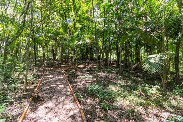 Terreno à venda em Contorno, Ponta grossa cod:V5714 - Foto 14
