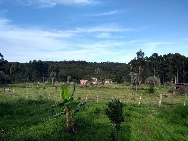 Alugo sitio 2,5 hectares - Foto 5