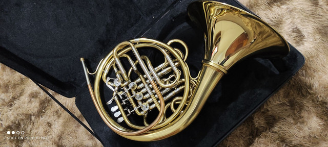 Trompa Stanford - Foto 4