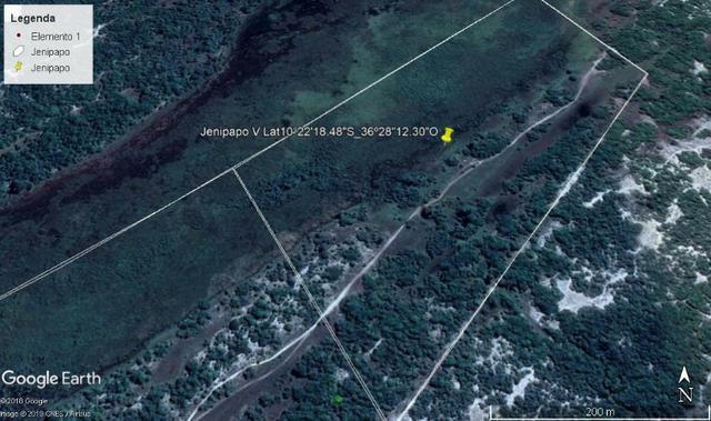Jenipapo 840.000m2 pasto e floresta nativa - Foto 8