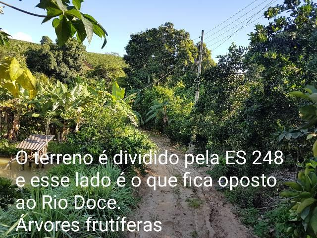 Sítio em Colatina na ES 248 na beira do Rio Doce - Foto 3