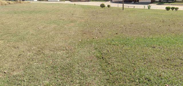 Poda de grama com cortador a gasolina sopro e retiro  - Foto 5
