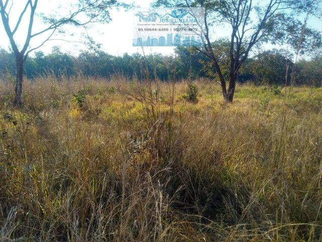 Chácara 60 hectares há 5 km do asfalto da Estrada da Guia - Foto 11