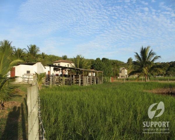 Chácara à venda em Jabuticaba, Guarapari cod:FA0007_SUPP - Foto 13