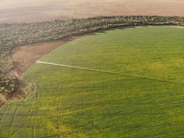 8271 | Fazenda à venda com 10 quartos em ZONA RURAL, BALSAS - Foto 5