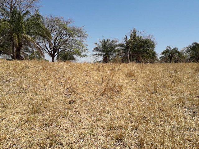 Terra assentamento 30 anos 7 alqueires  - Foto 8