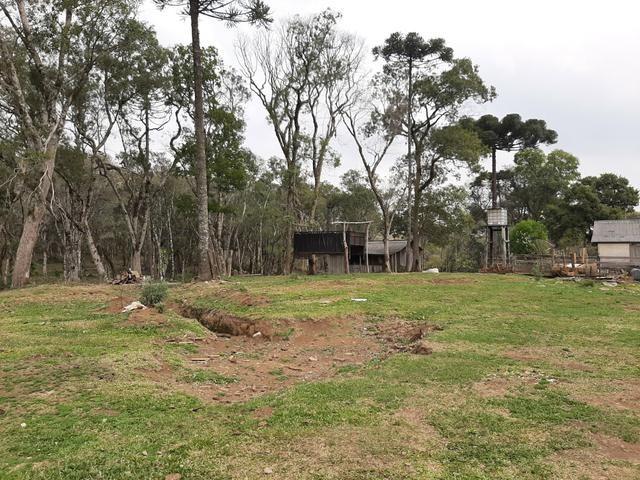 Fazenda de 100 Alqueires. 70 de capoeira - 16 km da Colônia Vitória. Guarapuava PR - Foto 8