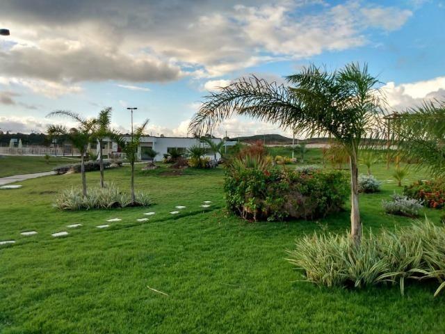 Oportunidade Passo Lote nascente R$65.000,00 Facilito entrada Jardimdas Tulipas - Foto 12