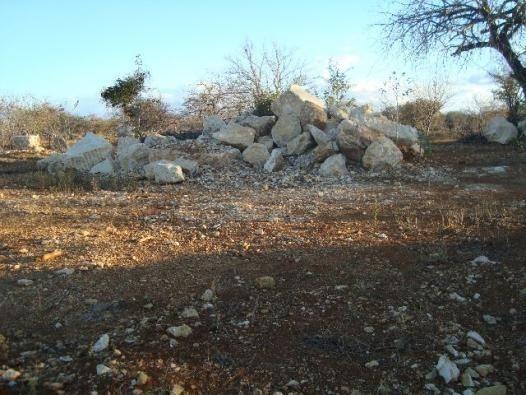 Exploração de Minério , terreno para plantação e criação de gado - Foto 4