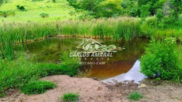 Fazenda à venda, , zona rural - carlos chagas/mg - Foto 12