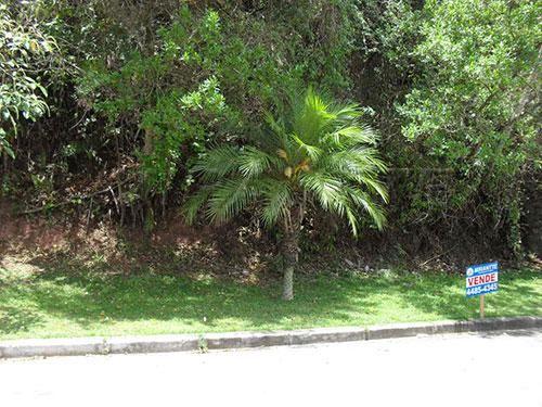 Terreno à venda em Serra da cantareira, São paulo cod:147724 - Foto 3