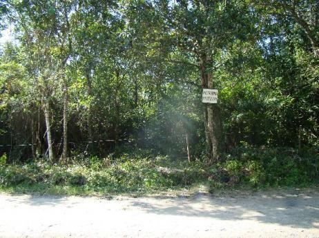 Terreno à venda em Centro, Mongaguá cod:120817 - Foto 3