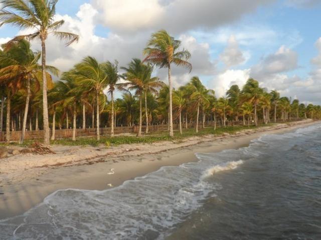 Terreno à venda em Centro, Camamu cod:55612 - Foto 14