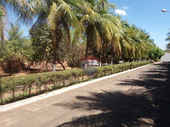 Terreno para locação em avenida padre cícero - Foto 5