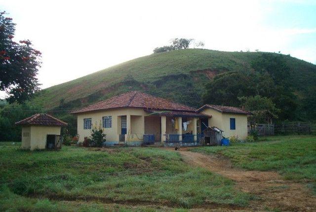 Fazenda em Silveiras - Cód 1505 - Foto 4