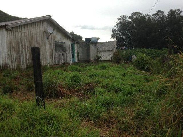 Sítio em Santo Antônio - Terreno Rural com Casa na RS 474 - Peça o Video - Foto 9
