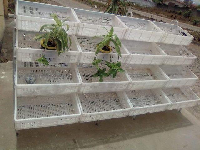 Verdureiro com 16 cesto - Foto 2