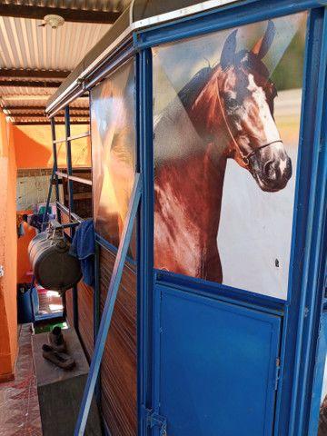 Trolete para cavalo