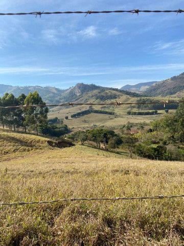 Maravilhosa Fazenda São Bento do Sapucaí - SP - Foto 3