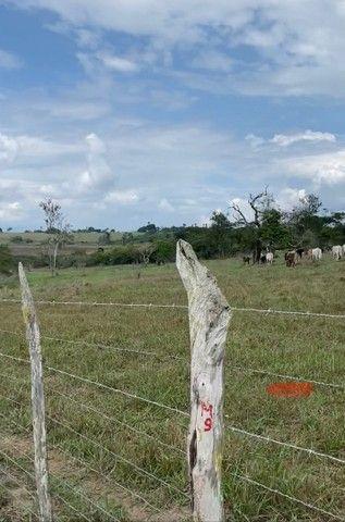 Fazenda em São Gonçalo dos Campos  - Foto 5