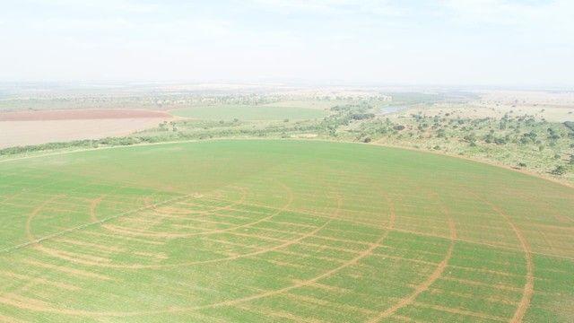 Fazenda com 695ha pra irrigação, na Regiao de João Pinheiro!! - Foto 8