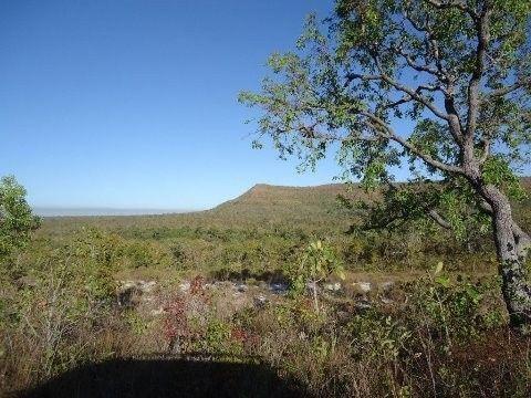 FA00036 - Fazenda em Tocantins-TO com 4.000 hectares