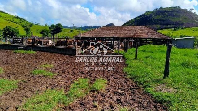 Fazenda à venda, , zona rural - carlos chagas/mg - Foto 19