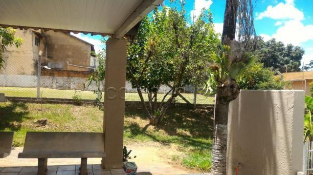 Sítio para alugar em Loteamento auferville, Sao jose do rio preto cod:L7151 - Foto 13