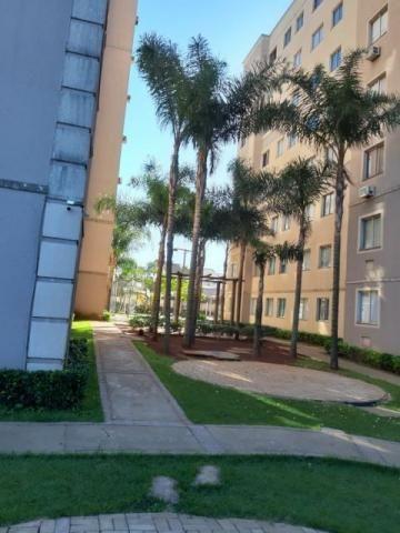 8073 | apartamento à venda com 2 quartos em jd imperial ii, maringá - Foto 4