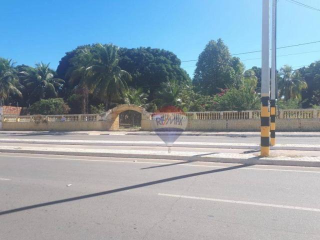 Terreno a venda, Avenida Virgílio Távora, Juazeiro do Norte! - Foto 7