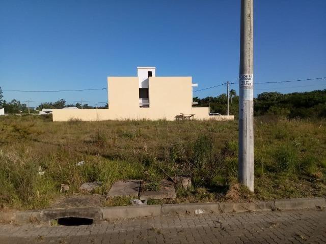 Terreno atrás do Zaffari Hípica - Foto 4