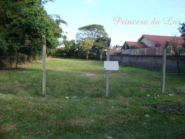 Terreno comercial para locação, Camaquã, Porto Alegre. - Foto 8