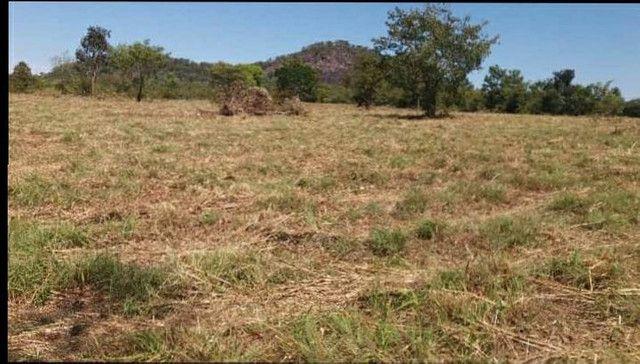 Terreno à venda, 18 alqueires por R$ 540.000,00 - Vila Mandi/PA - Foto 2