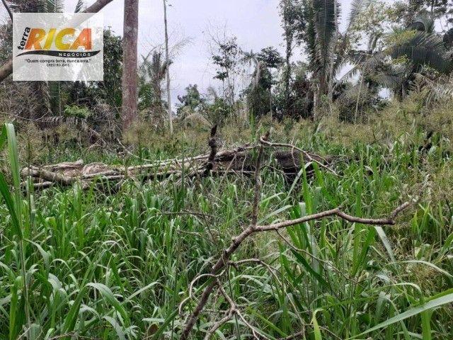 Fazenda à venda, com 750 hectares na Área Rural de Porto Velho/RO - Foto 2